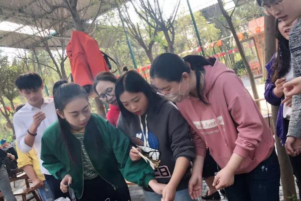苏州高端网络营销推广欢迎来电洽谈-江苏久山科技