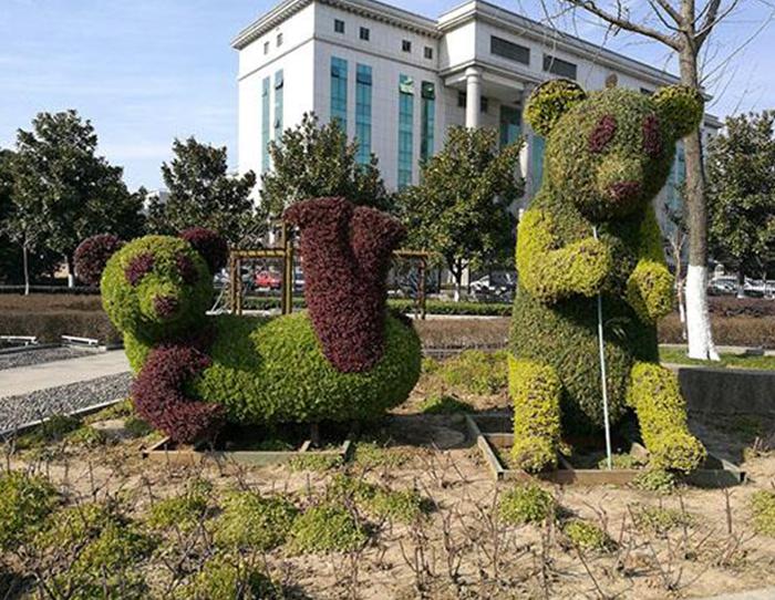 煙臺廣場綠雕多少錢-新秀景觀工程