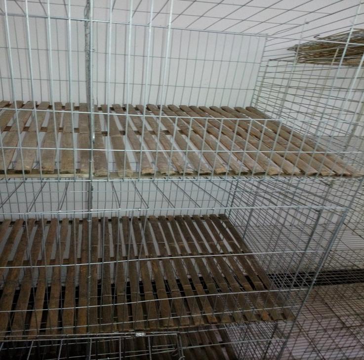 陕西定做定制子母兔笼哪里有卖