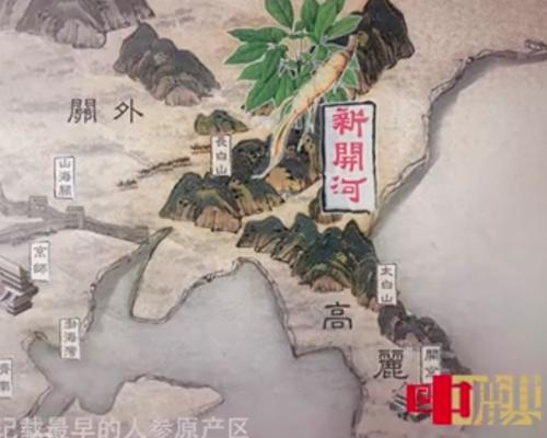 上海專業影視后期-中麒影視制作