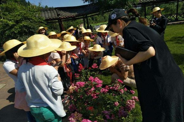 蘇州專業的研學交流培訓機構-啟優文化培訓