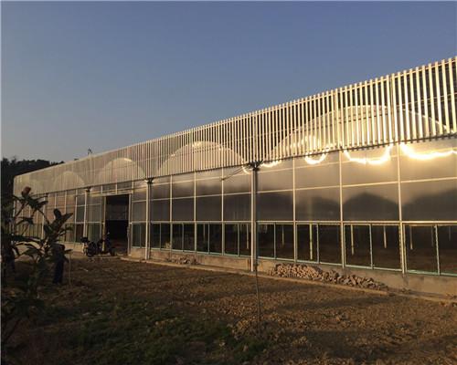 湖北優質智能植物工廠技術-美匠橙溫室技術