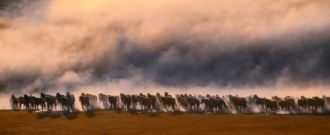 河北冬季南疆摄影团服务好-坝上团长摄影