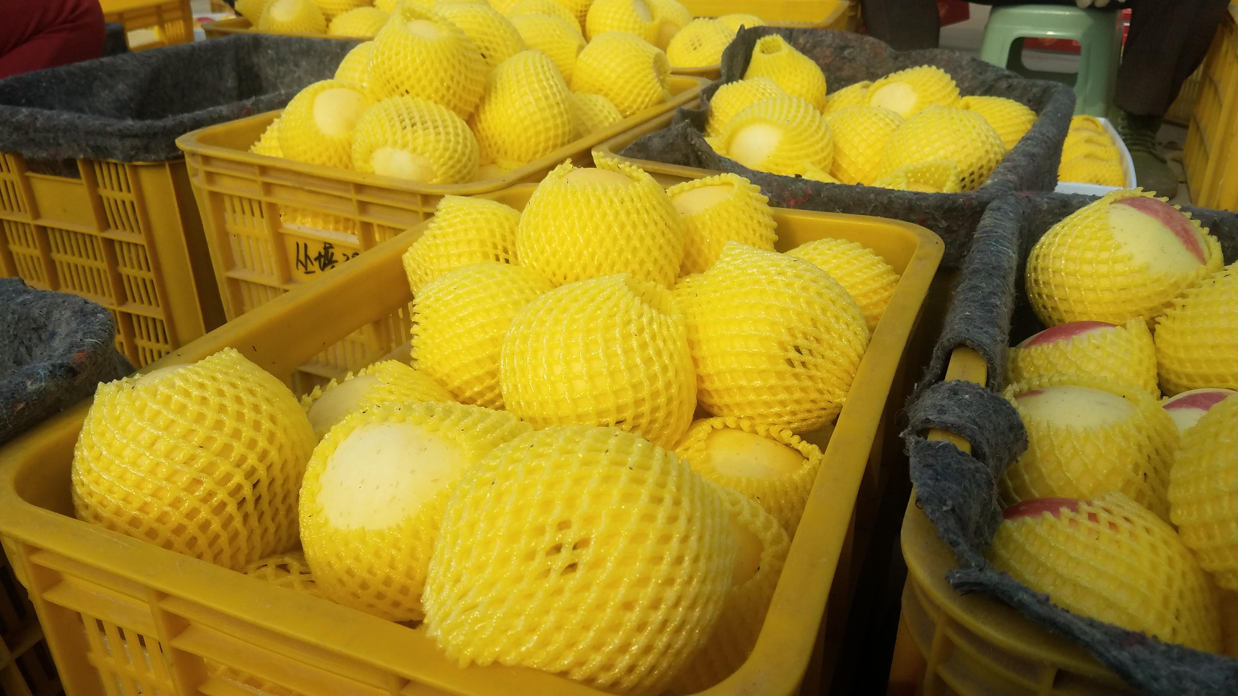 广东当季北纬37°黄金苹果哪家好