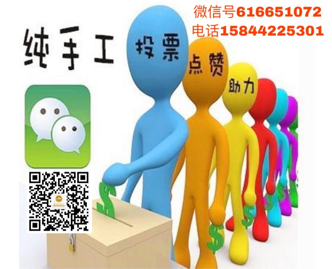 丰满承接微信投票业务多少钱