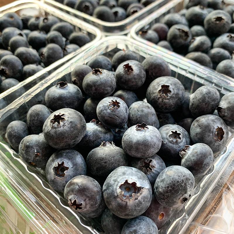蓝莓怎么泡酒_成熟蓝莓_杭州成熟蓝莓怎么选-春夏水果合作社-舞台灯光网