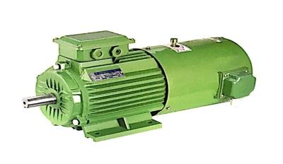 龍泉高效節能三相異步電動機制造商