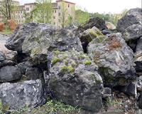 景德鎮文化石墻地址