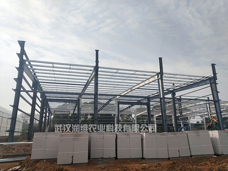 枝江商業玻璃溫室大棚多少錢