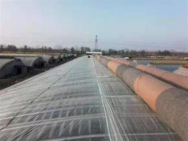 興安盟陽光板智能溫室大棚生產廠商